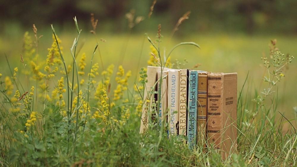 books/meninadaestrada