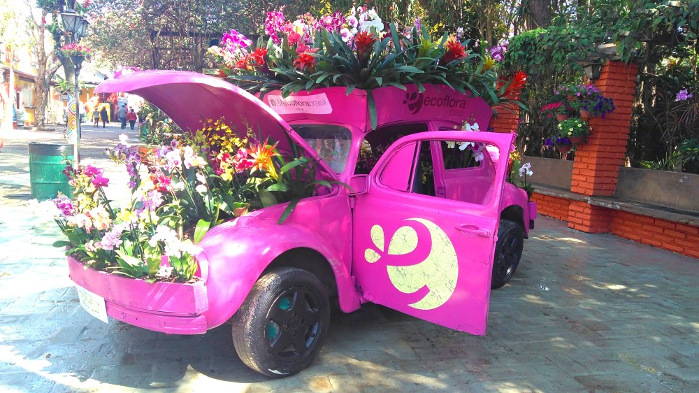 O tradicional fusquinha florido dessa vez estava cor-de-rosa | Crédito: Camila Honorato